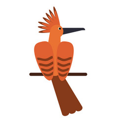Hoopoe bird exotic icon vector