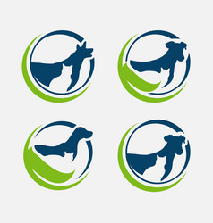 pet care shop design vector image
