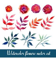 Set of beautiful watercolor flowers vector image