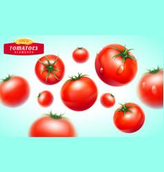 tomato realistic 3d fruit vegetable juice vector image
