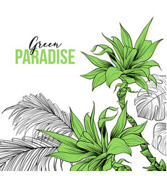 tropical leaves hand drawn design vector image