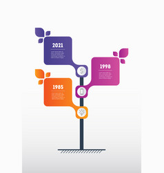 vertical timeline or infographics with three vector image