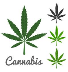cannabis vector image