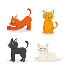 cartoon characters color tabby cat set vector image