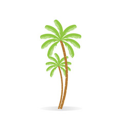 coconut tree palm with bunch of coconut fruit vector image