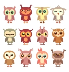 Cute owl flat characters set vector image