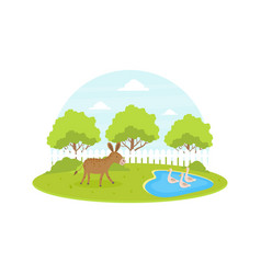 farm animal and birds at summer rural landscape vector image