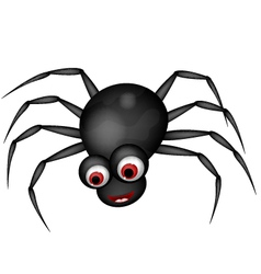 funny spider cartoon vector image