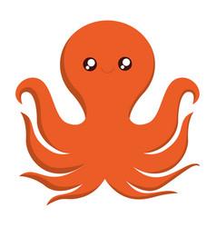 Octopus icon image vector