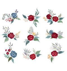 Set burgundy roses on a vector