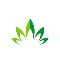 green leaf lotus flower abstract logo vector image vector image