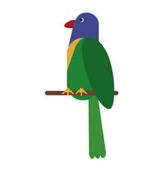 parrot exotic bird nature vector image