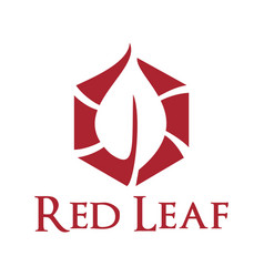 red leaf logo design vector image