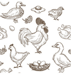 Chicken and ducks sketch pattern background vector