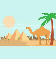 desert view egypt pyramids flat vector image