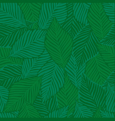 exotic plant tropical pattern palm leaves vector image