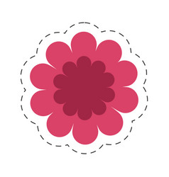 gerbera flower spring color cut line vector image