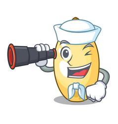 Sailor with binocular cedar pine nuts on a cartoon vector