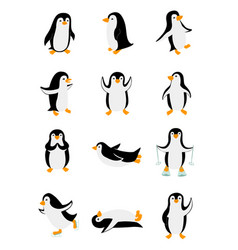 set little penguins in different poses funny vector image