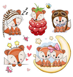 set of cartoon foxes on a white background vector image
