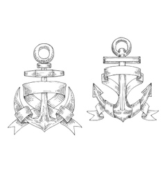 Sketched marine anchors wrapped by ribbon vector image