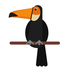 toucan bird exotic fauna vector image