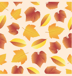 leaves collect-04 vector image