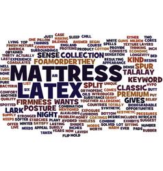 Latex mattress text background word cloud concept vector
