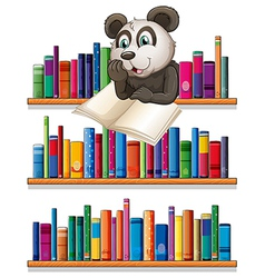 A panda reading above the wooden shelf with books vector image