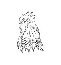 head rooster hand drawn style vector image