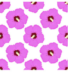 Hibiscus pink floral seamless pattern vector