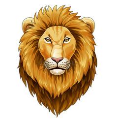 lion head mascot vector image