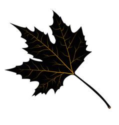 maple leaves black silhouette vector image