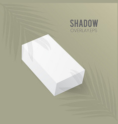Rectangle box mockup perspective with leaf shadow vector