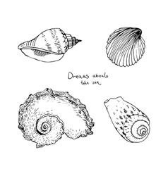 Set of hand drawn sea shells vector image