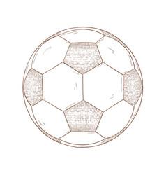 soccer ball hand drawn sketch vector image vector image