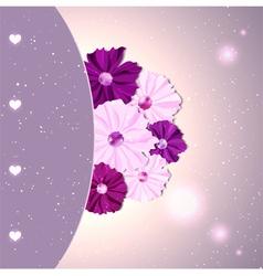 Springtime colorful cosmos flower vector