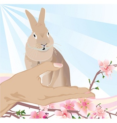 Easter bunny in the hand vector image vector image