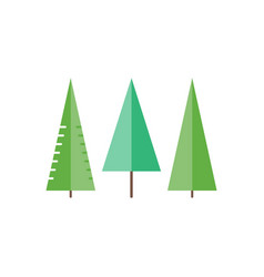 Trees in flat style - spruce fir-tree pine vector