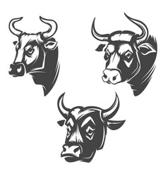 Bull heads emblems isolated on white background vector