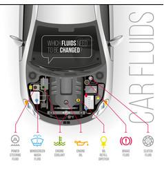 Car fuids vector