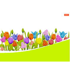 multicolored tulips on a white background vector image
