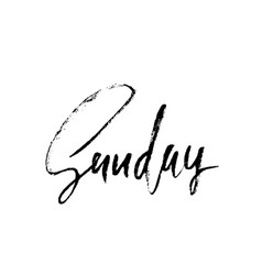 sunday day of a week handdrawn modern brush vector image