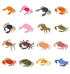Crab icons set isometric 3d style vector image vector image