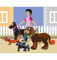 Walking of dogs vector image