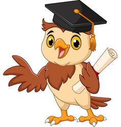 cartoon owl wearing graduation cap holding diploma vector image