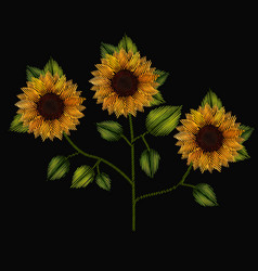 colorful sunflowers plant set embroidery in black vector image