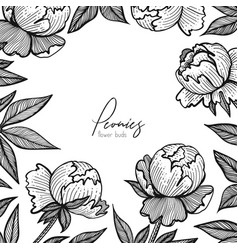floral frame with peonies detailed graphic vector image