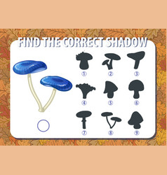 game for kids find the correct shadow of vector image