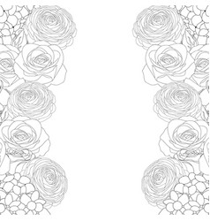 Rose hydrangea and ranunculus outline border vector